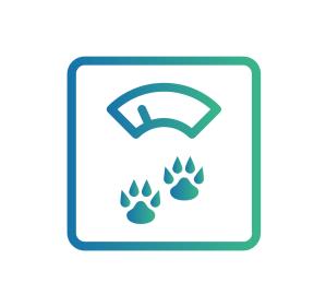 Caninsulin.com weight loss icon