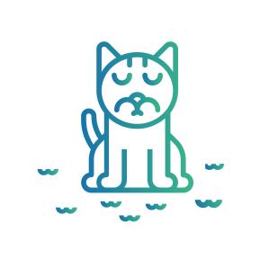 Caninsulin.com cat icon